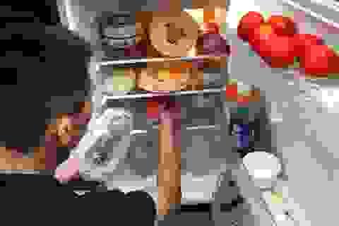 Sai lầm chết người khi tích trữ thực phẩm ngày Tết