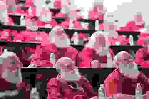 Khám phá trường đào tạo... ông già Noel