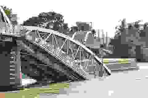 Đình chỉ các trưởng đại diện đường thủy sau sự cố cầu Ghềnh, cầu An Thái