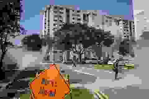 Đã có 242 người ở Singapore nhiễm virus Zika chỉ sau 1 tuần