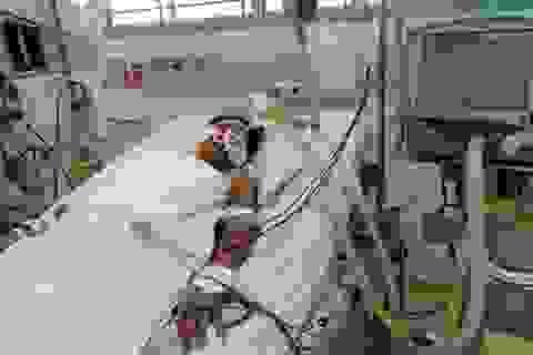 5 người tử vong, hơn 21 nghìn ca mắc sốt xuất huyết