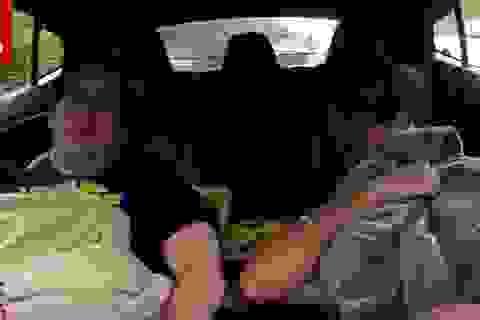 Nhiều tài xế lạm dụng tính năng tự lái của xe Tesla