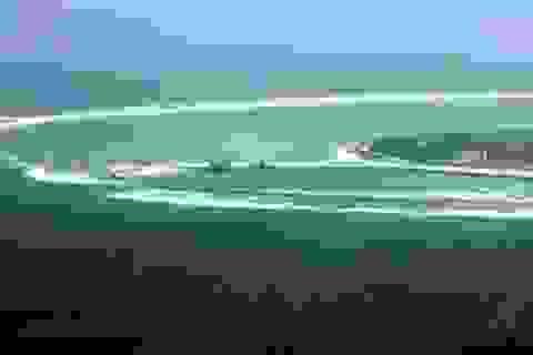 Cộng đồng quốc tế kêu gọi ngăn chặn hành động phi pháp của Trung Quốc ở Biển Đông