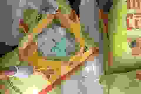 Thu giữ hơn 100.000 ống thuốc kích thích giá đỗ
