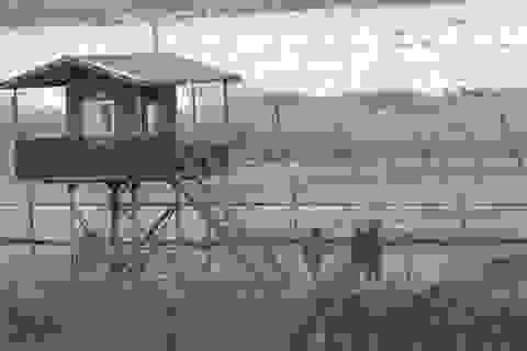 """Triều Tiên bị """"tố"""" làm nhiễu tín hiệu máy bay Hàn Quốc"""