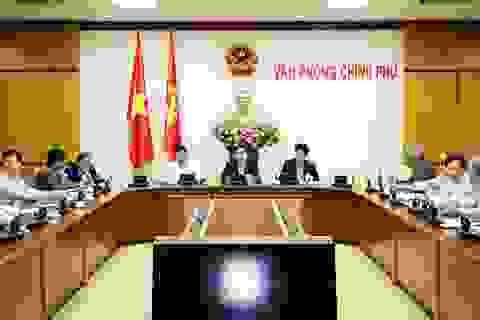 Thủ tướng lập Ban chỉ đạo xử lý tồn tại ở 12 nhà máy, dự án lớn