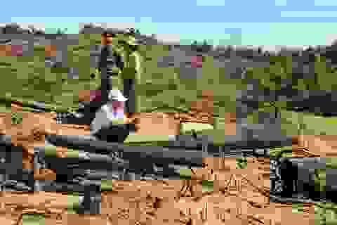 Phát hiện thêm vụ phá rừng quy mô lớn ở Bình Định