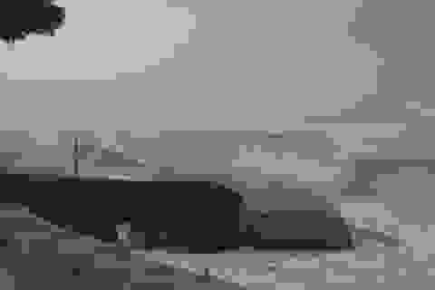 Sóng lớn đe dọa bờ biển Hội An
