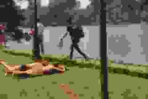 Du khách Tây mặc nội y nằm ở Hồ Gươm gây bức xúc cộng đồng mạng