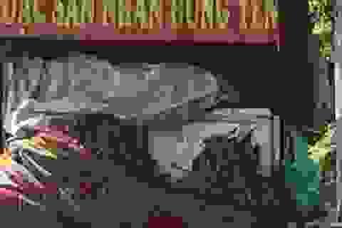 """Thực hư """"nhãn lồng Hưng Yên xịn"""" giá siêu rẻ ngập đường phố Hà Nội?"""