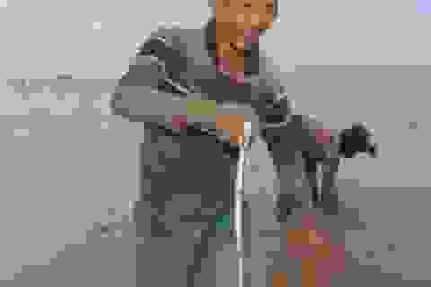 """""""Cao thủ"""" Tiền Giang săn cá chình mỡ, mỗi chuyến kiếm 3 triệu đồng"""