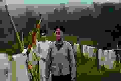 Tin vui của điện ảnh Việt tại liên hoan phim Cannes 2017
