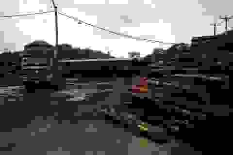 Thanh Hóa: Chưa đủ thủ tục pháp lý, nhà máy chế biến gỗ vẫn ngang nhiên hoạt động