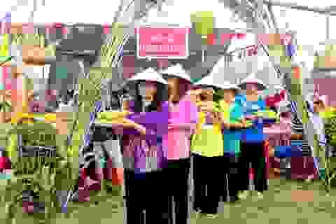 Lễ hội bắp nếp bị hủy phần hội do không… có bắp