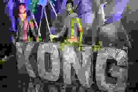 """""""Bom tấn Kong"""" và cơ hội của du lịch Việt"""
