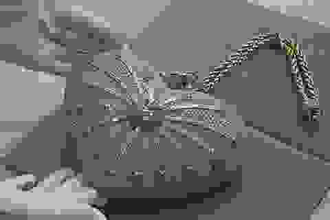 Chiếc túi xách đắt nhất thế giới trở lại thị trường