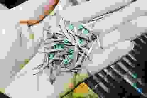 Đại gia Hà Thành chi 100 triệu đồng mua Bạch trà ngàn năm thưởng tết