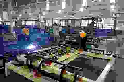 Vụ cháy nhà máy Thaco: Thiệt hại 250 tỉ đồng, khôi phục sản xuất