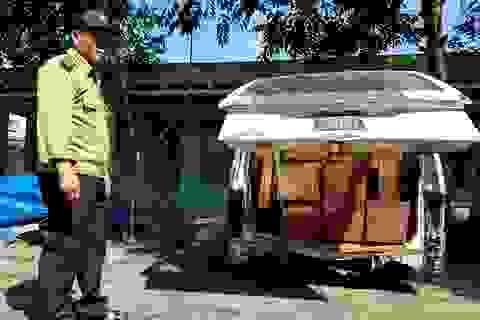 Xe khách gắn biển số xanh chở gỗ lậu?