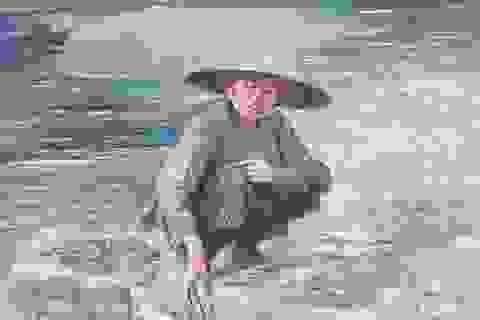 Sau vụ kỷ luật, Trà Vinh mời họa sĩ Nguyễn Nhân đến nhận lại tranh