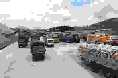 """Hàng trăm xe tải chất đầy keo tràm vạ vật chờ """"xả"""" hàng sau bão"""