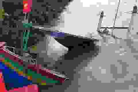 Tàu cá trên đường tránh bão về bị tàu sắt đâm chìm rồi bỏ chạy