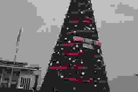 """Đề nghị công an xác định hành vi phá cây thông Noel """"khủng"""" nhất tỉnh Bắc Giang"""