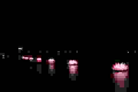 """Thắp sáng 7 đóa sen """"khổng lồ"""" trên sông Hương"""