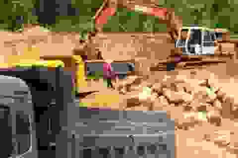 Dừng việc doanh nghiệp tự ý khai thác đất trái phép tại Bình Định!