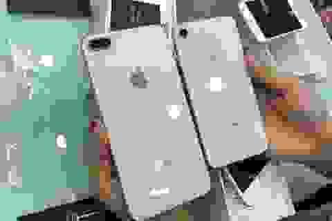 iPhone 8 Plus chính hãng ra mắt vẫn ế ẩm, hàng xách tay giảm mạnh