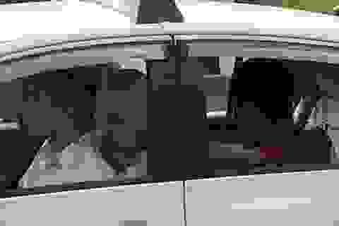 Tên cướp siết cổ tài xế taxi khi xe đang chạy trên xa lộ Hà Nội
