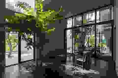 Kiến trúc Việt Nam đoạt giải thưởng trong ngày đầu tiên của WAF 2017