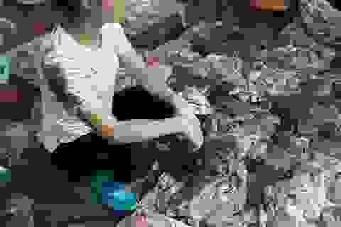 """Phản thịt vấy bẩn & sự hôi tanh của """"kinh tế thị trường lệch lạc"""""""