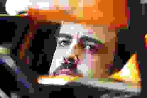 Fernando Alonso và Lewis Hamilton có thể rời bỏ F1