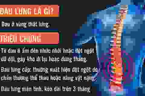[Inforgraphics]: Mọi điều cần biết về đau lưng