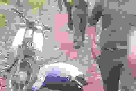 Người đàn ông gục chết bên xe máy trong khu rừng tràm