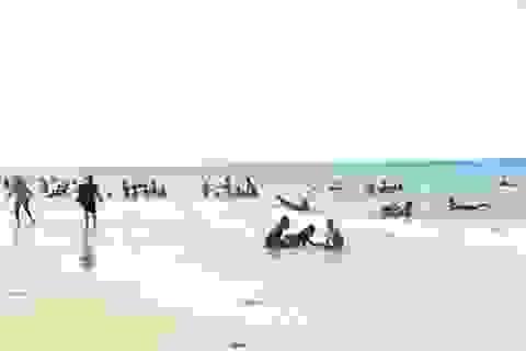 """Quảng Trị: Du lịch """"thức dậy"""" sau sự cố môi trường biển"""
