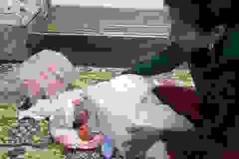 Cán bộ y tế phát hiện bé sơ sinh bị bỏ rơi ở mương thủy lợi