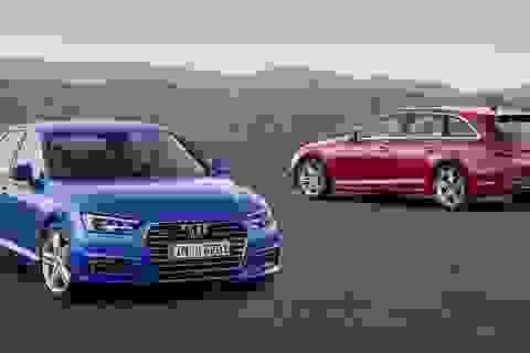 Audi và Lamborghini cùng lên đỉnh