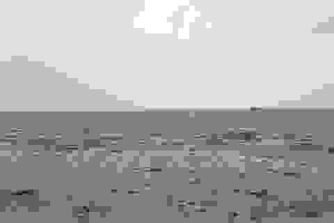 Đại dương biến mất do cơn bão Irma hút hết nước khỏi bờ biển