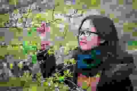Giới trẻ đổ xô về Mộc Châu ngắm hoa mận trắng