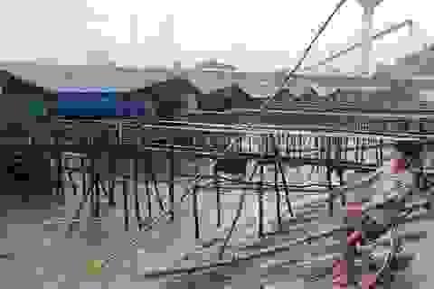 Bão số 2 gây mưa lớn, biển động mạnh tại Hà Tĩnh