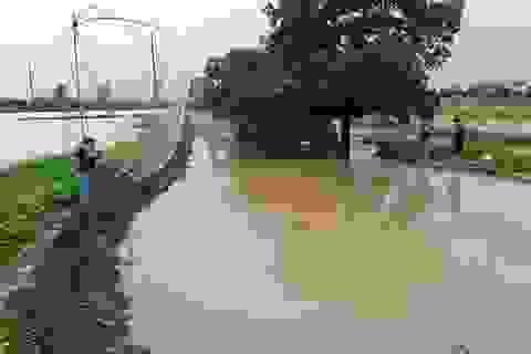 Hà Nội: Người dân rủ nhau bắt cá sau mưa bão