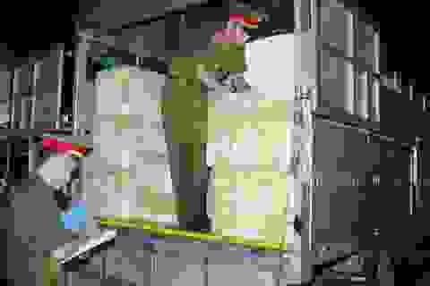 Bắt giữ xe ô tô tải chứa gần 3,5 tấn nội tạng động vật thối