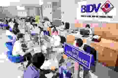 BIDV ra mắt dịch vụ nộp thuế hải quan điện tử 24/7