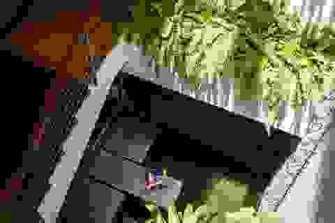 Biệt thự tại Đà Nẵng đẹp hút hồn với kiến trúc như công viên thẳng đứng trong nhà