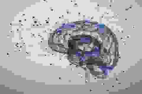 Phát hiện bất ngờ: Tăng động giảm chú ý là rối loạn thần kinh
