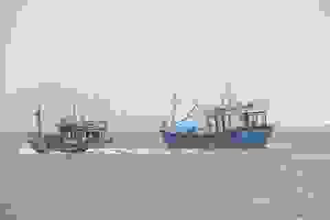 Quảng Trị đã chi trả hơn 460 tỷ đồng bồi thường sự cố môi trường biển