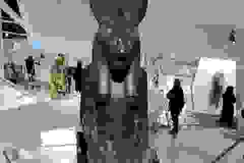 Ai Cập phát hiện thêm 27 pho tượng nữ thần chiến tranh Sekhmet