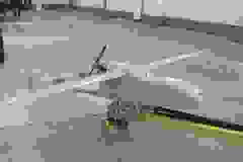 IS tuyên bố bắn rơi máy bay không người lái của Nga